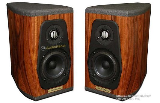 loa AudioSolutions Guimbarde chuan