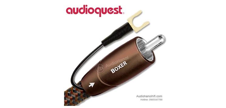 day tin hieu AudioQuest Boxer