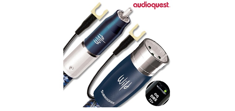 day tin hieu AudioQuest Wild Dog
