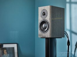 Loa Dynaudio Special Forty chuan