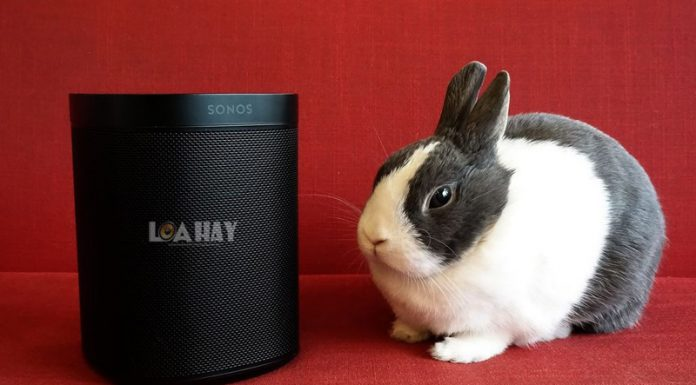 Loa thong minh Sonos