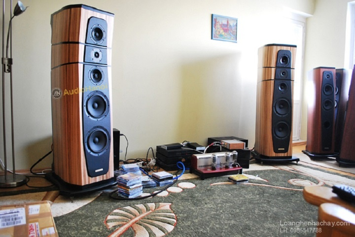 Loa AudioSolutions Rhapsody 200 chat
