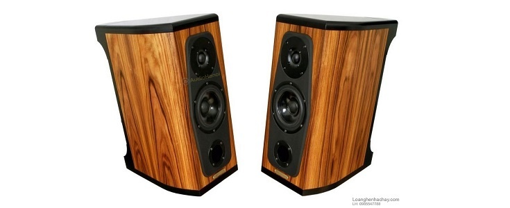 loa AudioSolutions Rhapsody 60 dep