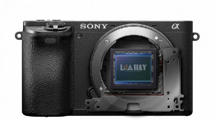 Cam bien Sony APS-C 31,5MP chuan