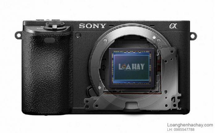 Cam bien Sony APS-C 31,5MP chuan