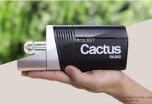 den studio Cactus RQ250 chuan