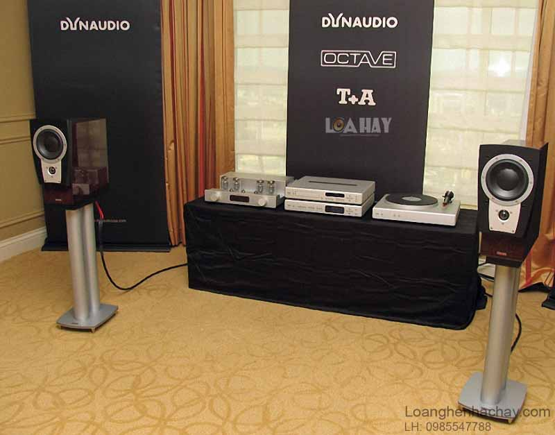 Loa Dynaudio Confidence C1 Platinum chat