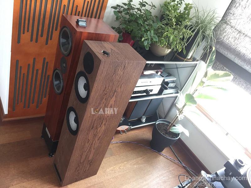 loa Pylon Audio Ruby 25