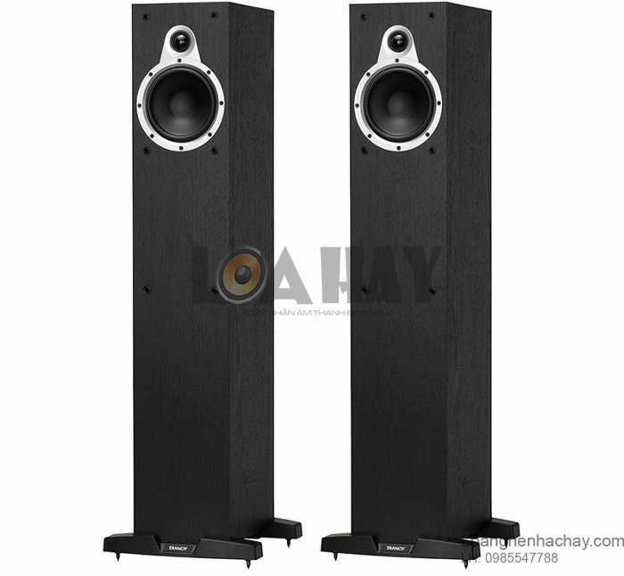 Loa Tannoy Eclipse Two an tuong loanghenhachay