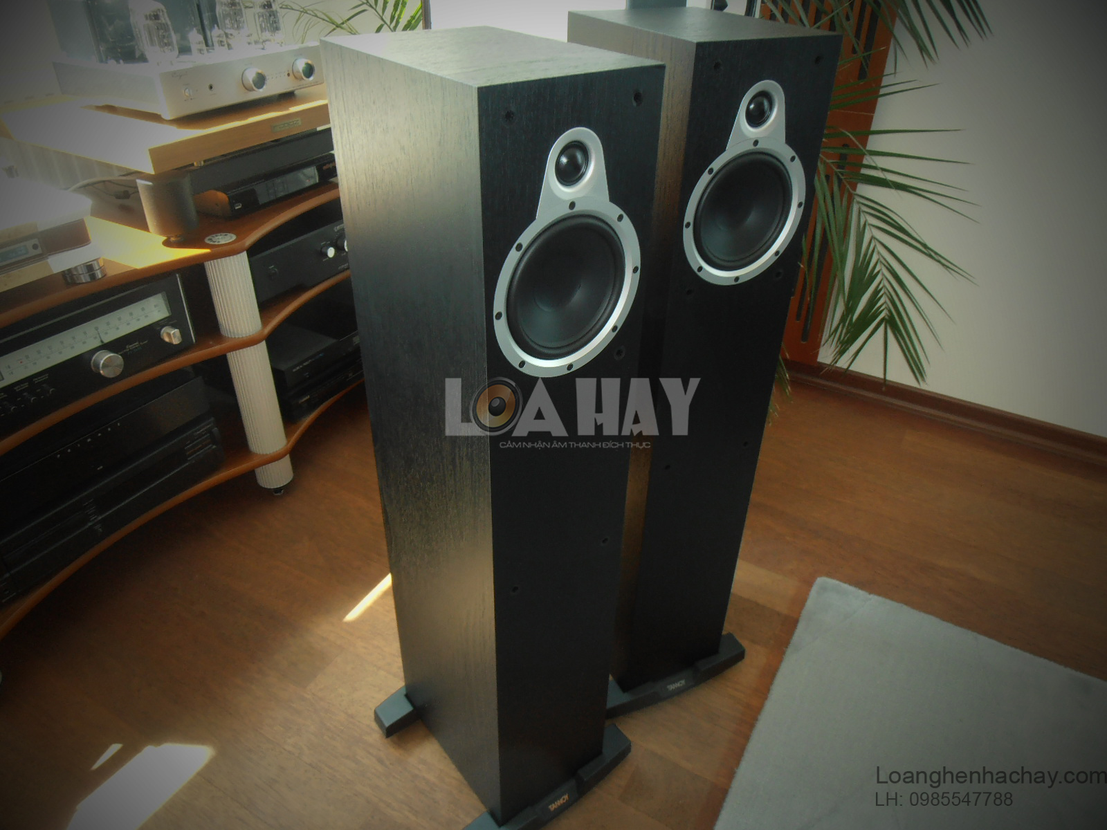 Loa Tannoy Eclipse Two chat luong loanghenhachay