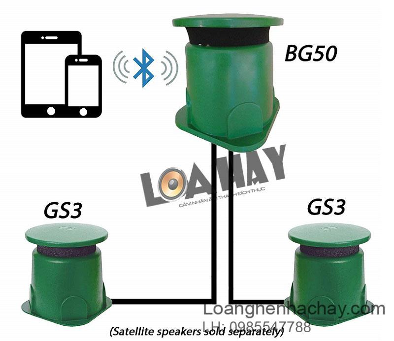 loa tic bg50 3