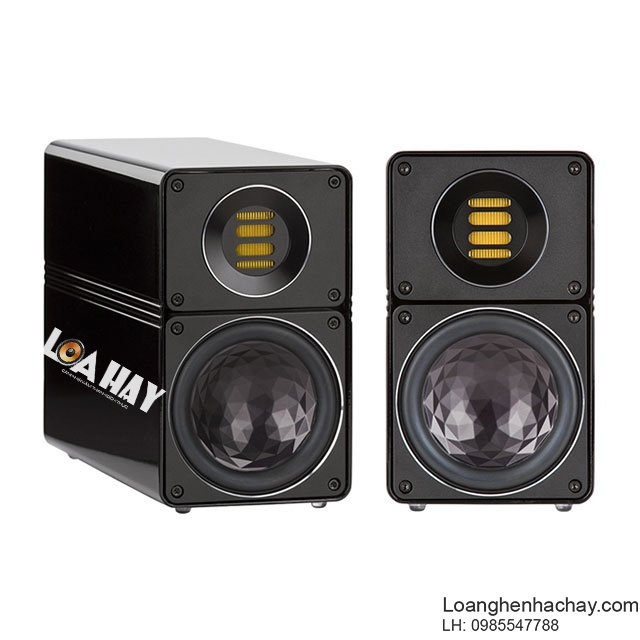 Loa Pylon Audio Diamond Monitor chuan